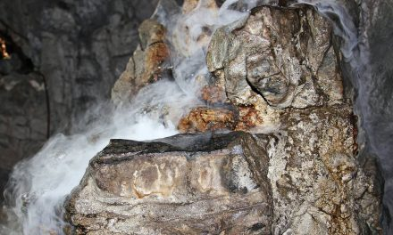Somovi u Vražića pećini