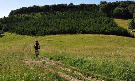 Na 2 kotača biciklom u jednom vikendu istraži #in medias res