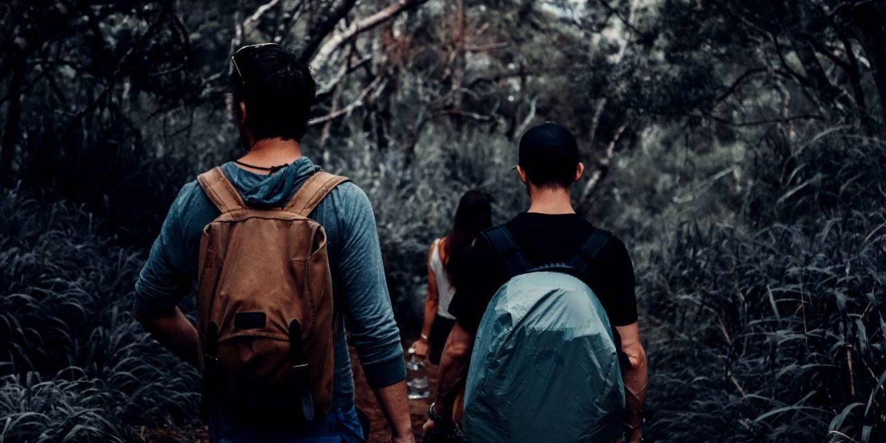 Planinarska društva